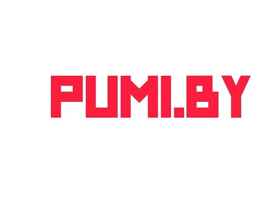 новый домен адрес сайта компании ООО ПУМИ_С