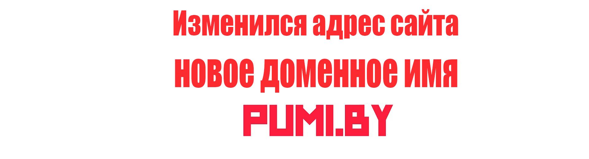 Новый адрес домен сайта ООО ПУМИ-Сбаннер