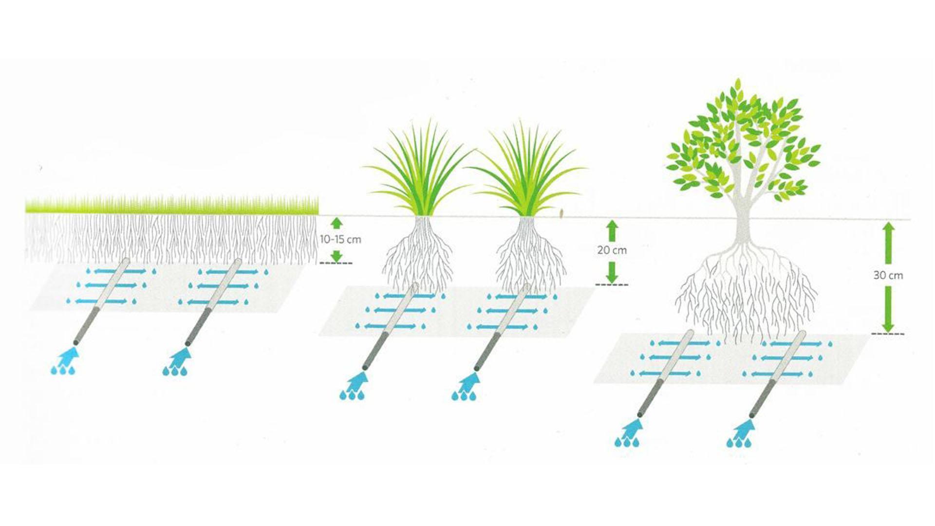 Орошение растений системой капельного полива