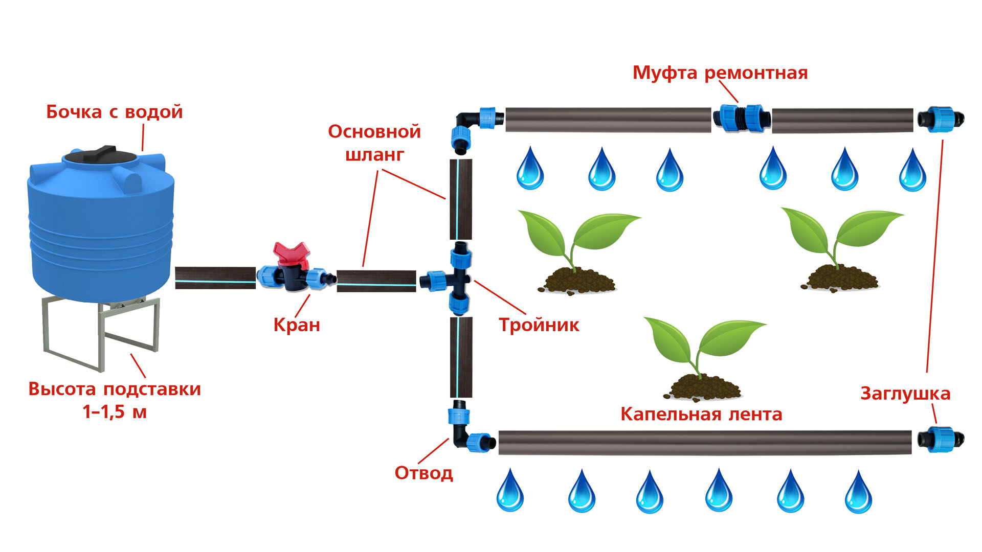 Капельный полив в Минске